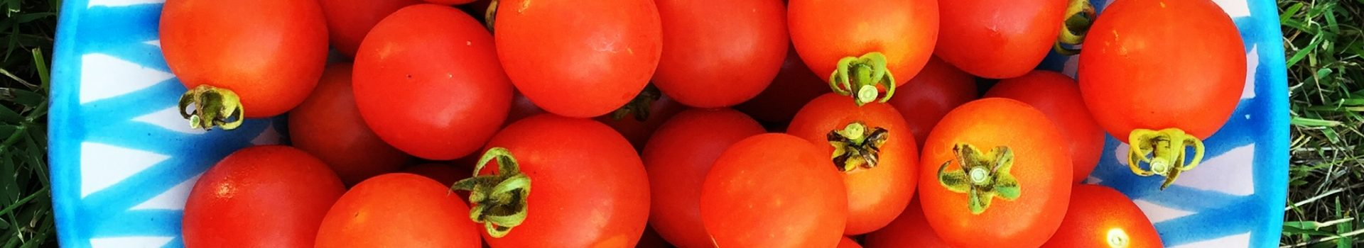 Healthy Eating: A Week of Meal-Prepping